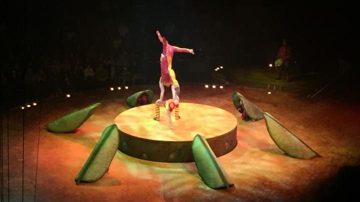 Le Cirque du soleil☀️